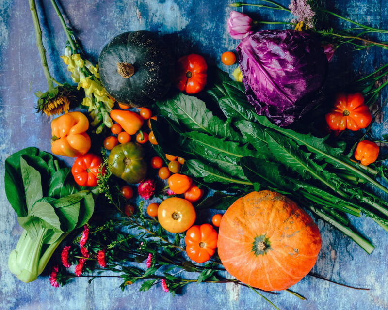 Nutrición integrativa CasaFen - Photo by Ella Olsson on Pexels