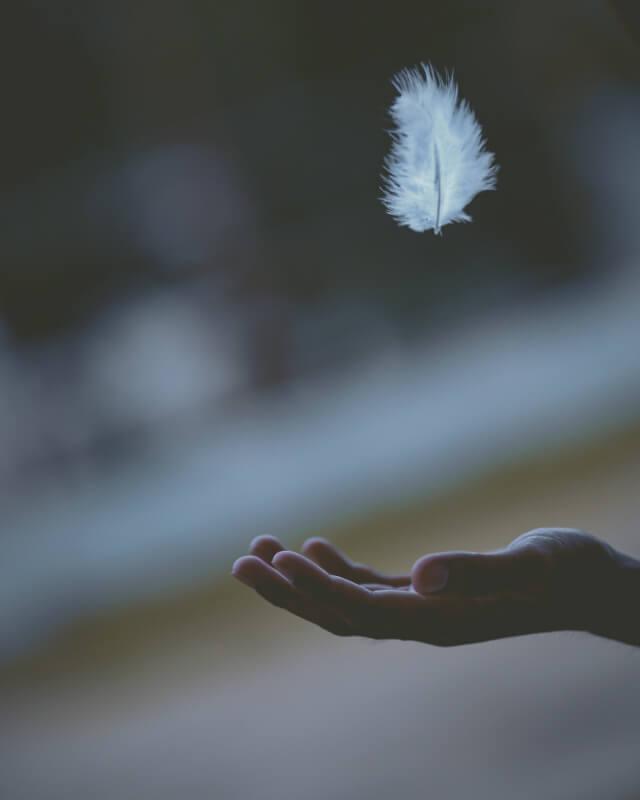 Seamos Sinceros ¿Sirve la Meditación para Reducir el Estrés- CasaFen -Photo by Javardh on Unsplash