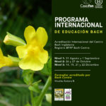 Programa Internacional de Educación Bach (BIEP)
