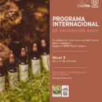 Programa Internacional de Educación Bach (BIEP) Nivel II - CasaFen