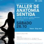 Taller anatomia sentida, viaje por el sistema nervioso