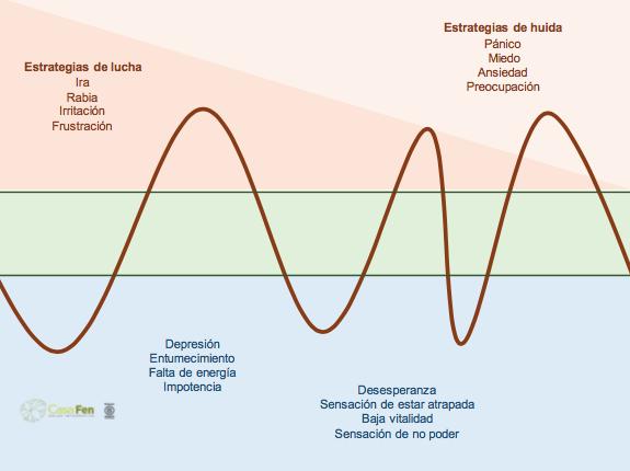 Entendiendo nuestras reacciones de estrés y supervivencia - CasaFen 7