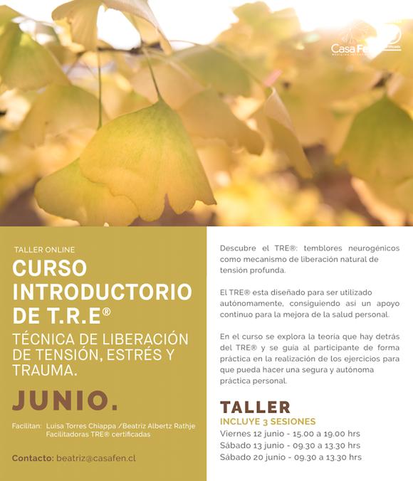Curso introductorio TRE online, junio - CasaFen