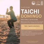 Taller de Taichi