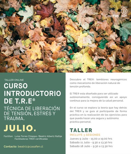 Taller TRE® Julio - CasaFen