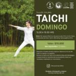 Taller Taichi Sept.-CasaFen
