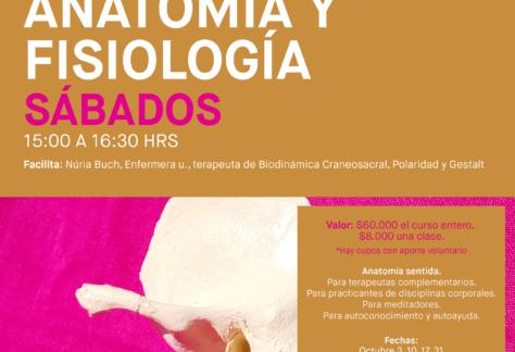 Anatomia-Fisiologia Primavera, Casafen