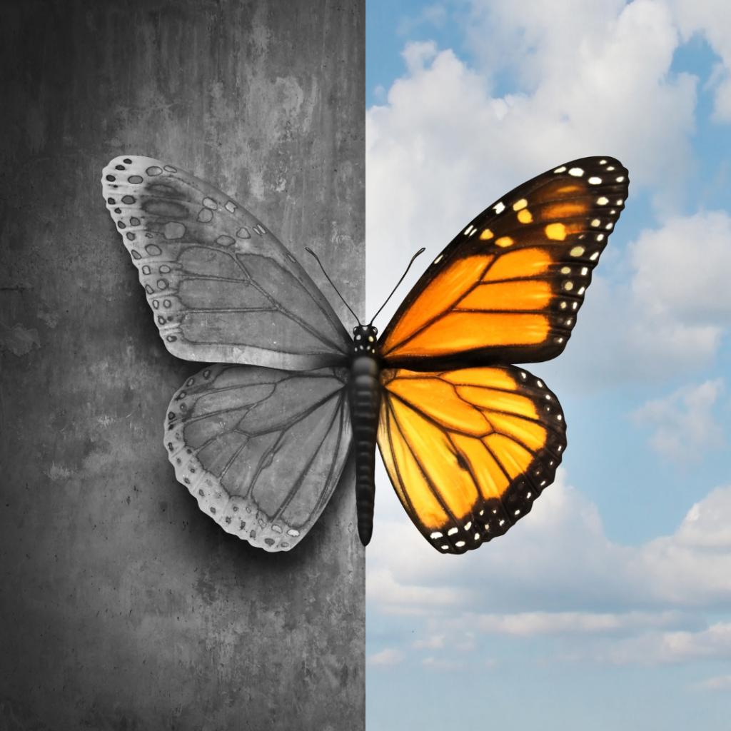 mitos en salud mental - casafen
