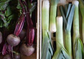 Donde comprar productos orgánicos, naturales y saludables a granel en Chile